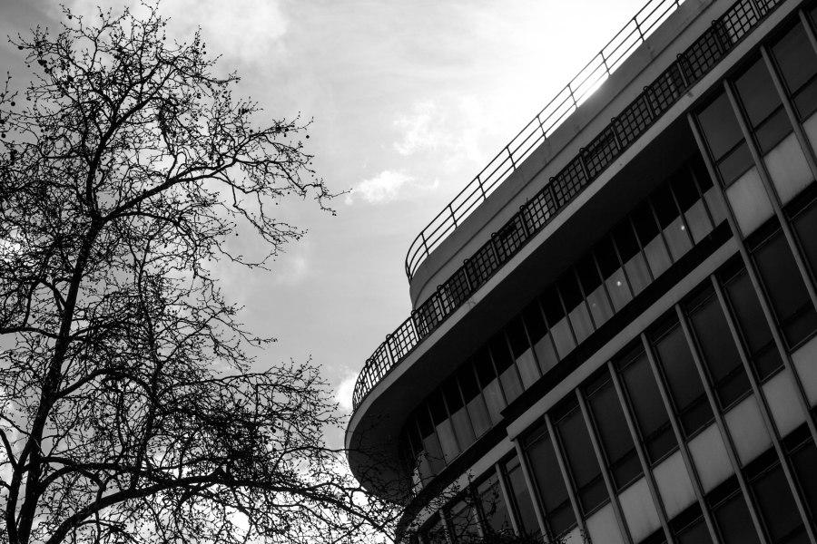 Sloane Square Sunday-4