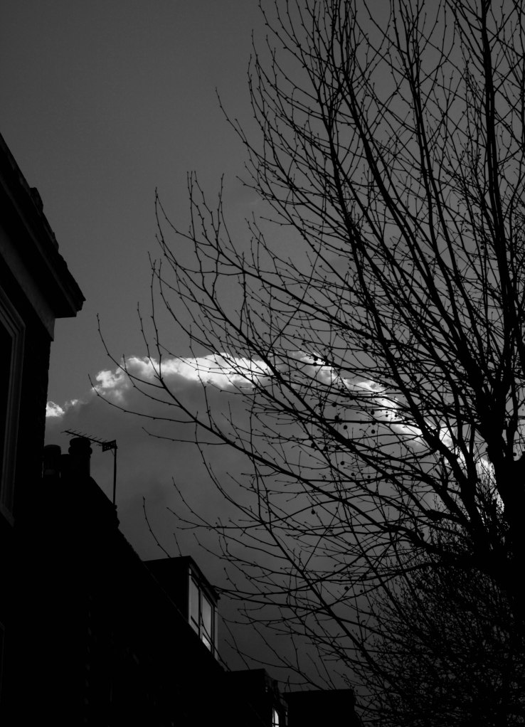 Sloane Square Sunday-6